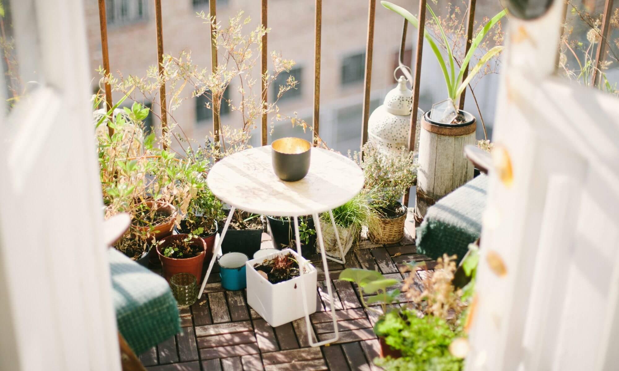 De leukste tips voor balkon en tuin!